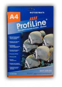 ХОЛСТ PROFILINE БХ/Г-220-А4-10  ХОЛСТ высокоглянцевый, 220г/м2, А4, 10л, 1440 dpi